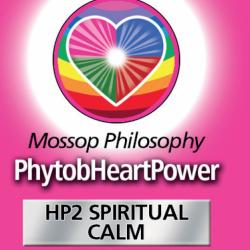 HP2 Spirituelle Gelassenheit