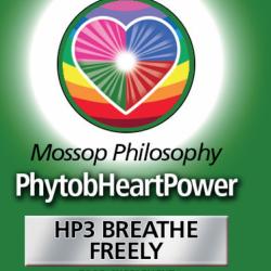 HP 3 Freier Atem