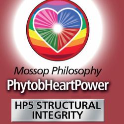 HP5 Structurelle Unversehrtheit